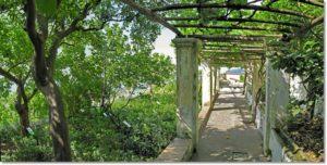 Giardino della Minerva Salerno Amalfi Coast