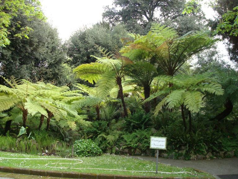 orto botanico, naples, napoli, napels, salerno, salerno travel, campania, italia, italie, italy