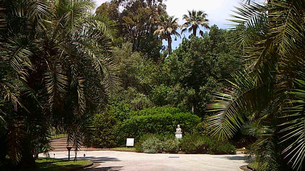 orto botanico, naples, napoli, napels, salerno, salerno travel, italia, italy, kinderen, kids, kindvriendelijk