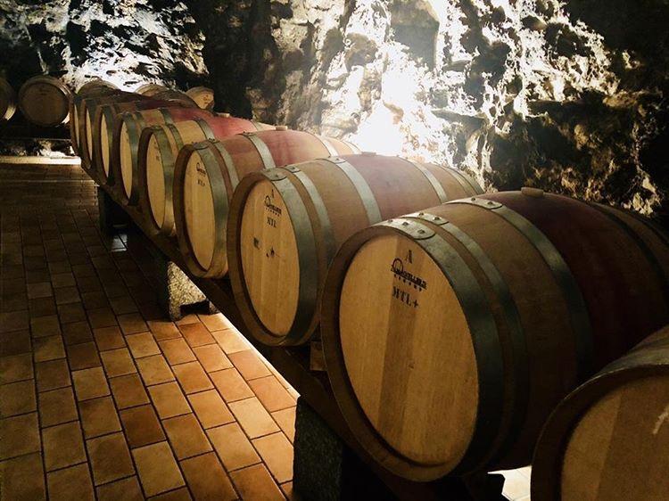 marisa cuomo, amalfi, amalfikust, amalfi coast, costa d'amalfi, salerno, salerno travel, naples, napoli, napels, wijn, wijnen