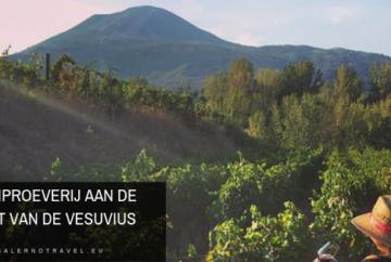 wijn, wijnproeverij, wijnen, naples, napels, napoli, salerno, salerno travel