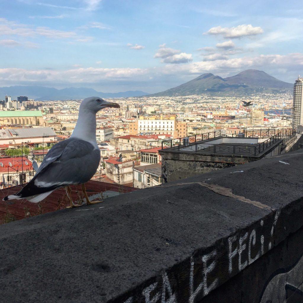 napels, naples. napoli, salerno, salerno travel, tour, walking tour, stedentrip, local tour
