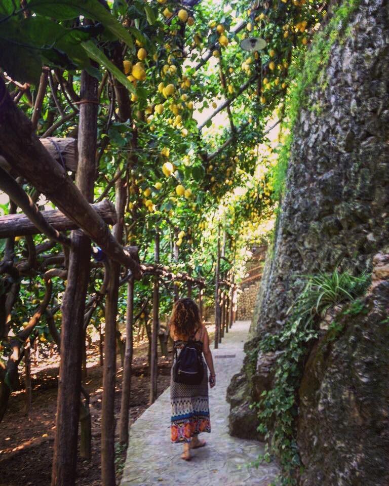 amalfikust, salerno, salerno travel, pad van citroenen, sentiero dei limoni, minori, maiori