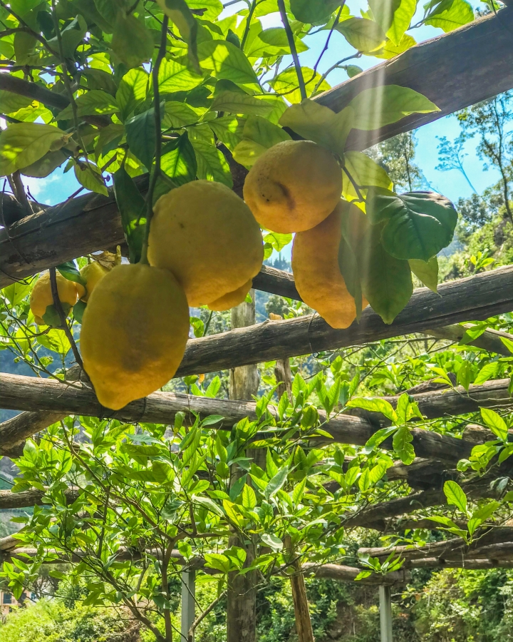 citroen amalfi amalfikust tour