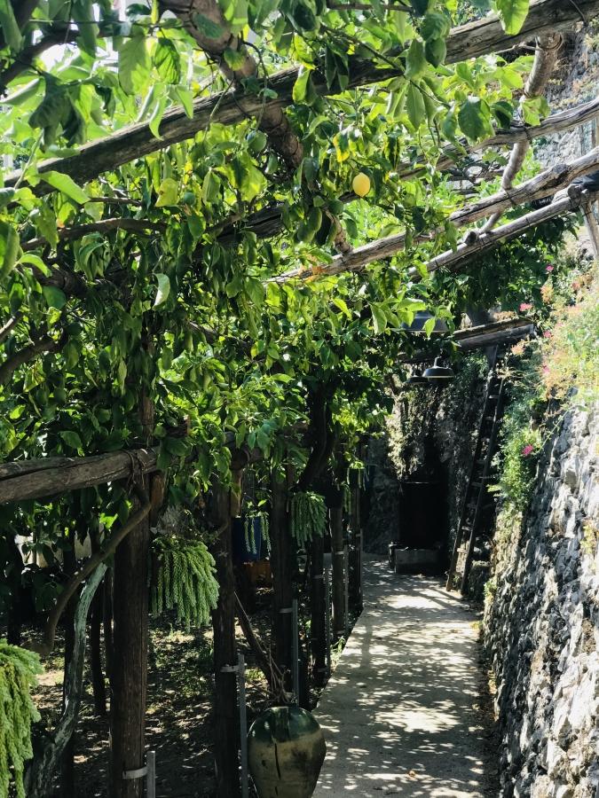 sentiero dei limoni amalfikust wandeling citroenen