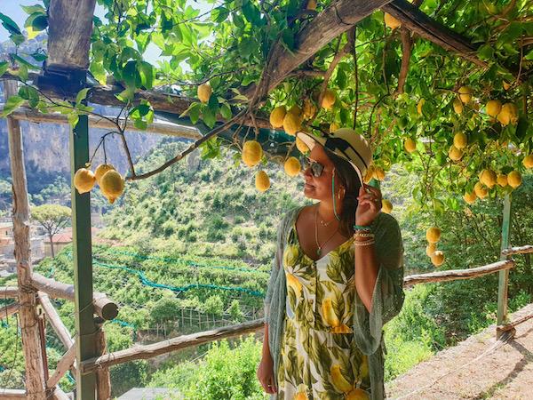 citroenen amalfikust lemon tour